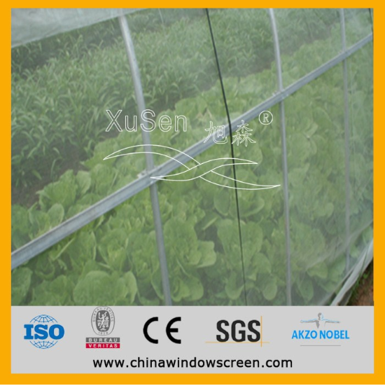 high quality agriculture greenhouse anti insect net, window screen mesh