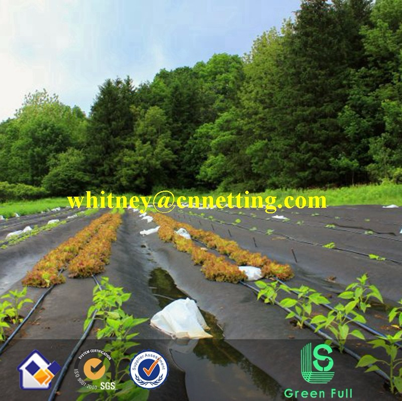 PP woven Fabric For Agriculture/Weed Control Mat/Anti Grass Cloth