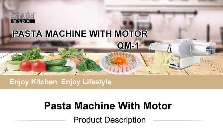 Professional Pasta Machine With Motor QM-1 in China