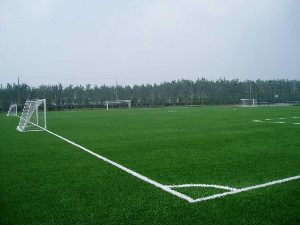 Kunstmatige nep voetbal gras/kunstgras