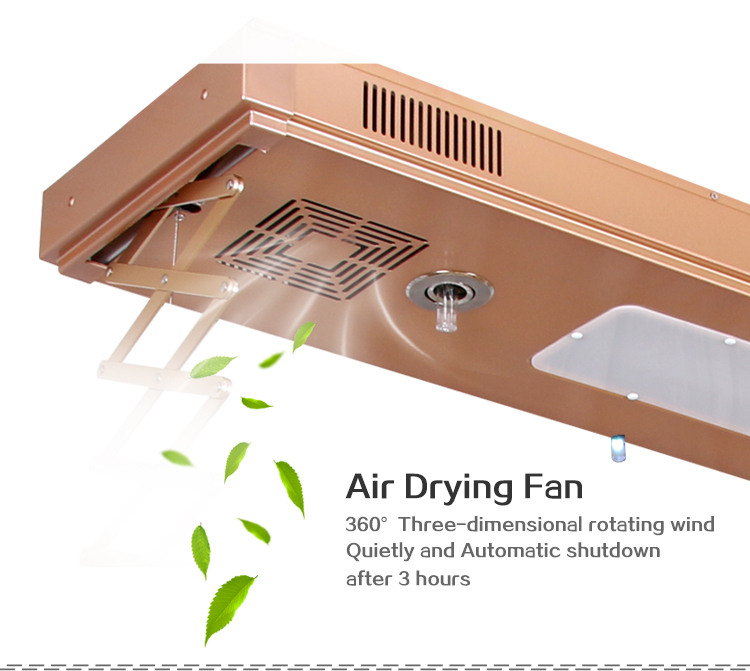 Ceiling Electric Remote Automatic Lifting Clothes Drying