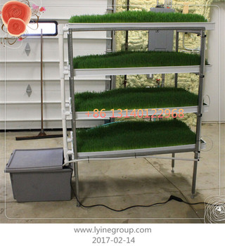 Hydroponic Plastic Gardening Nursery Trays WITH Drain Holes/ Plant Seed  Growing Trays For Seedling Microgreens