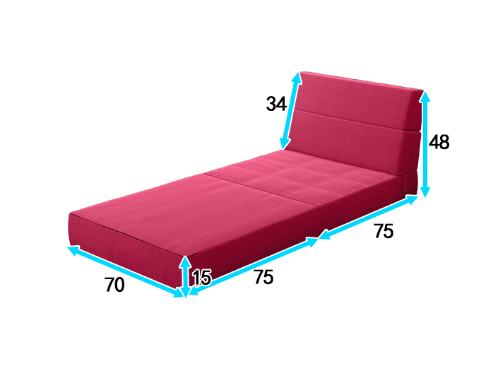 Tri-Fold Foam Folding Mattress and Sofa Bed For Guests