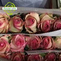 A Variety Of Colors Wholesale Natural Preserved/Fresh Flowers And Natural Preserved/Fresh Flowers