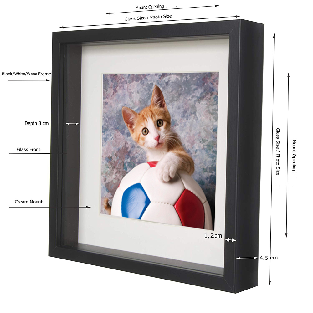 China Supplier Wall Art 3D Shadow Box frame 12x16 inches Specimen Box Frame