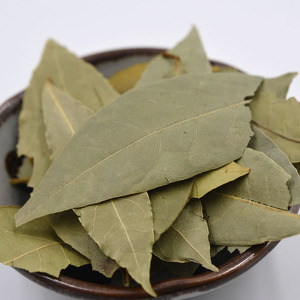 Best Dried and Fresh Bay Leaves Herbs