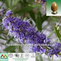ISO&GMP Vitex Agnus castus Extract powder