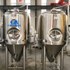 Beer brewing equipment ss fermenter with OEM design