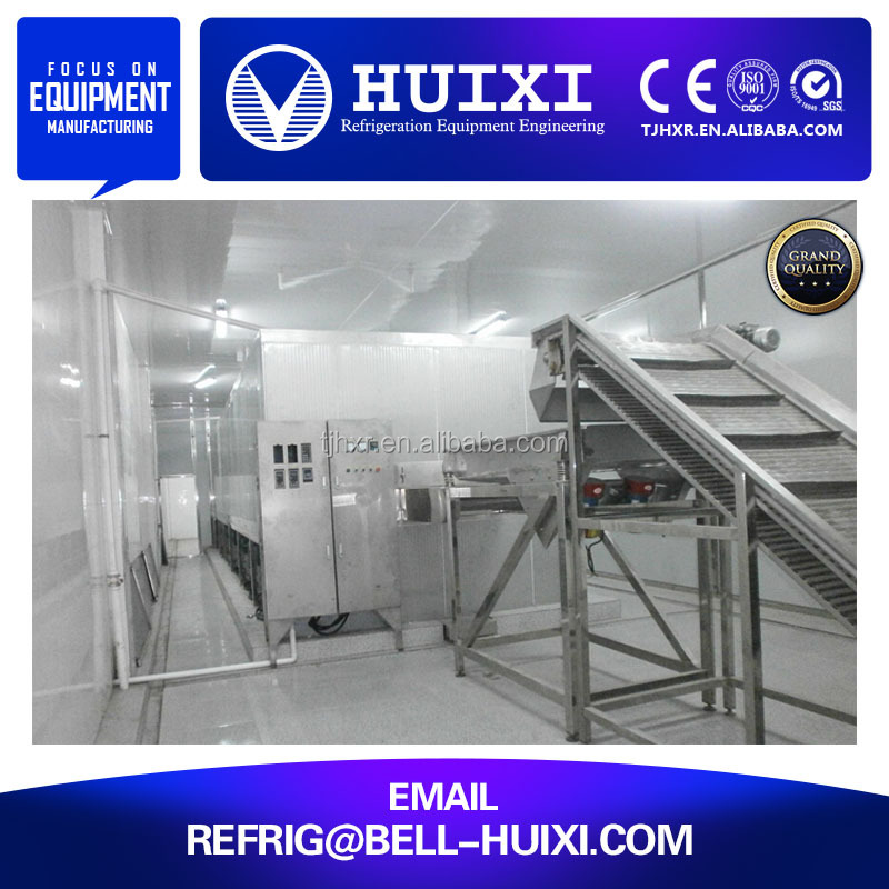IQF Fluidization Bed Quick Freezer for Fruit