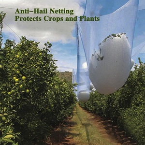 Polyethylene Hail Net, Polyethylene Hail Net Suppliers and