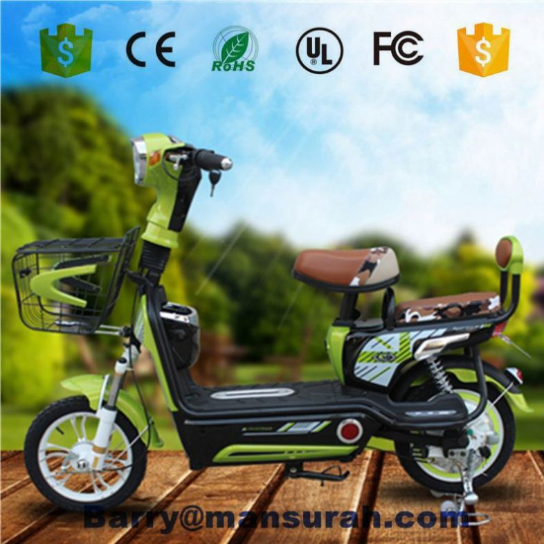 Aluminum Ally Frame 36V 250W Battery Foldable Electric Bicycle