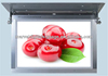 High quality full hd tft 19 inch bus roof lcd advertising display with wifi/3g