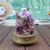 pink and purple rose in glass dome