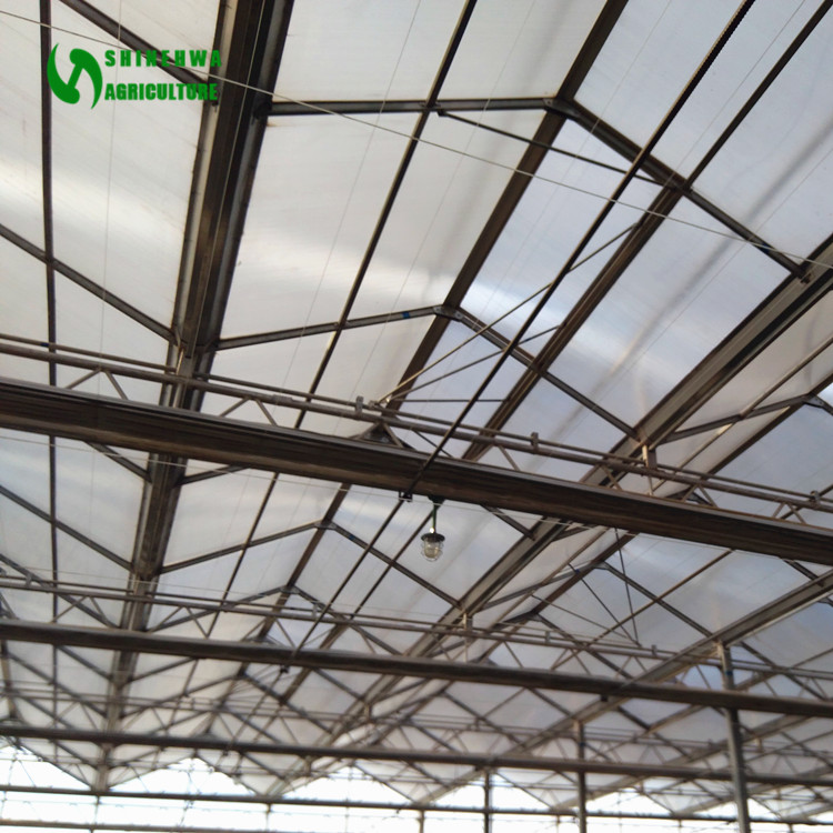 Low Cost Commercial Greenhouse Steel Structure