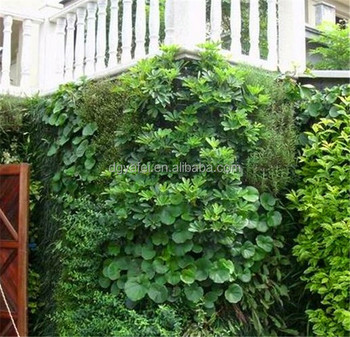 high quality indoor & outdoor artificial vertical green plants wall