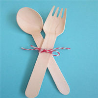 Disposable China Manufactured Wholesale Cheap Spoon Fork