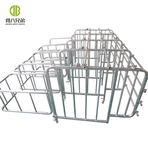 Hot Galvanized Pig Gestation Individual Crate Sow Hog Swine Stall
