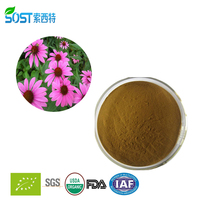 Wholesale pure natural echinacea purpurea extract