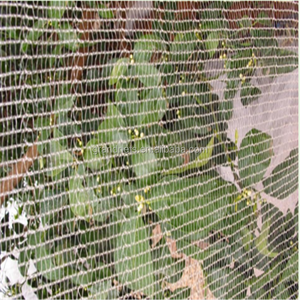 Apple tree anti hail net,HDPE anti hail net,greenhouse anti hail net /  granizo net / net antigranizo(Professional Producer)