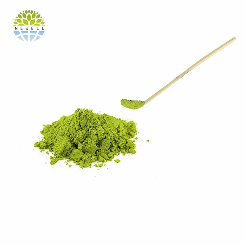 Direct factory ready to eat matcha green tea powder for food processing - 4uTea | 4uTea.com