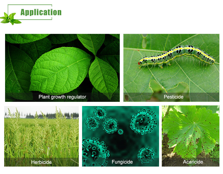 superior wetting and absorption of herbicides, insecticides, and fungicides into plant leaves,  insects
