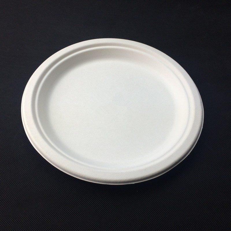 Biodegradable Bagasse Sugacane Paper Plate