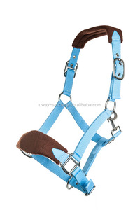 Full size equestrian horse halter with soft padding