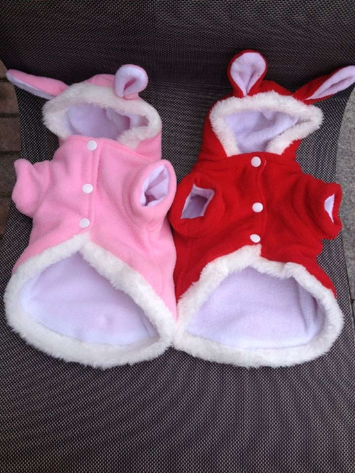 Cat Clothes Bunny Costume Accessories Amp Products For Cats
