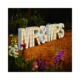 Free standing giant wedding letters decorative led light up giant wedding letters