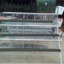 Chicken Cage For Laying Hens For Sale