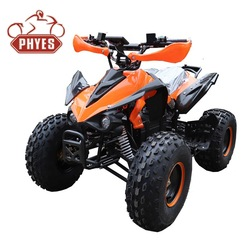 china phyes 2019 Mini moto cross 2 stroke 49cc 50cc pocket dirt bike cross bike for kids