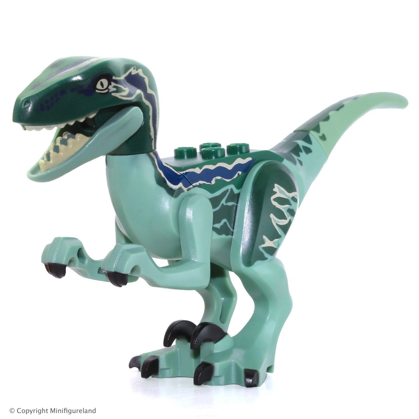 18152f32d9f Cheap Raptor Blue, find Raptor Blue deals on line at Alibaba.com