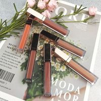 OEM makeup factory make your own liquid lipstick waterproof high quality private label lipstick matte