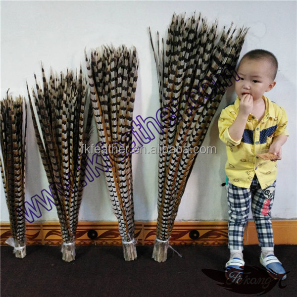 Best Selling Brazil Feathers Natural Color Reeves Pheasant Tail Feathers