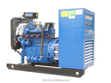 30kw natural gas generator for sales