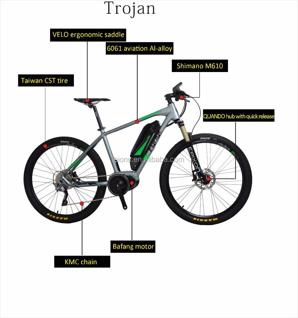 Bafang mid drive motor electric mountain bike push by 10ah for Mid motor electric bike