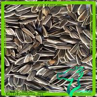 Black Sunflower Seeds for oil