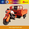 Brand New 3 Wheel Motorcycle Trike/250cc Three Wheeled Motorcycle for Sale