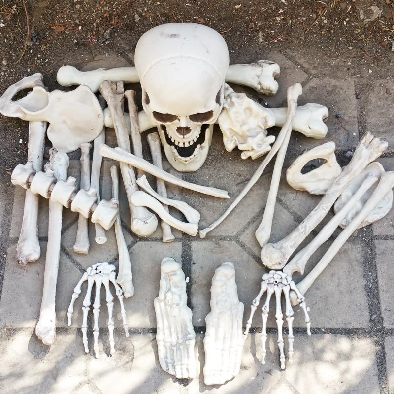 GB17002-bag of 28pcs bones (2)
