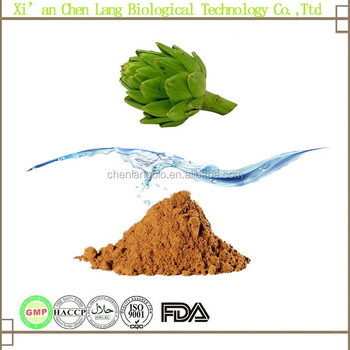 Health Proctect Artichoke From Vietnam With Best Price Rich In Artichoke Extract