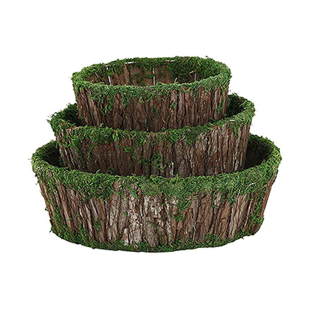 "Bark Moss Dish Garden Planters, Set of 3, Small 7.75"", Medium 10"", and Large 12.25"""