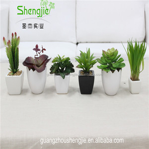 SJLJ013384 artificial plant / fake plastic succulent plant for office / restaurant decoration