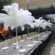 Higt quanlity wedding decoration colorful ostrich feathers