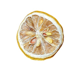 Factory Price Freeze Dried Fruits Slices Dried Lemon