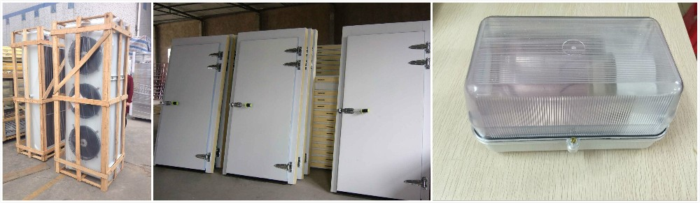 Green&health cold storage room freezer manufacturers