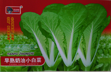 high quality brassica rapa chinese cabbage green leafy vegetable seeds for saleearly mature butter