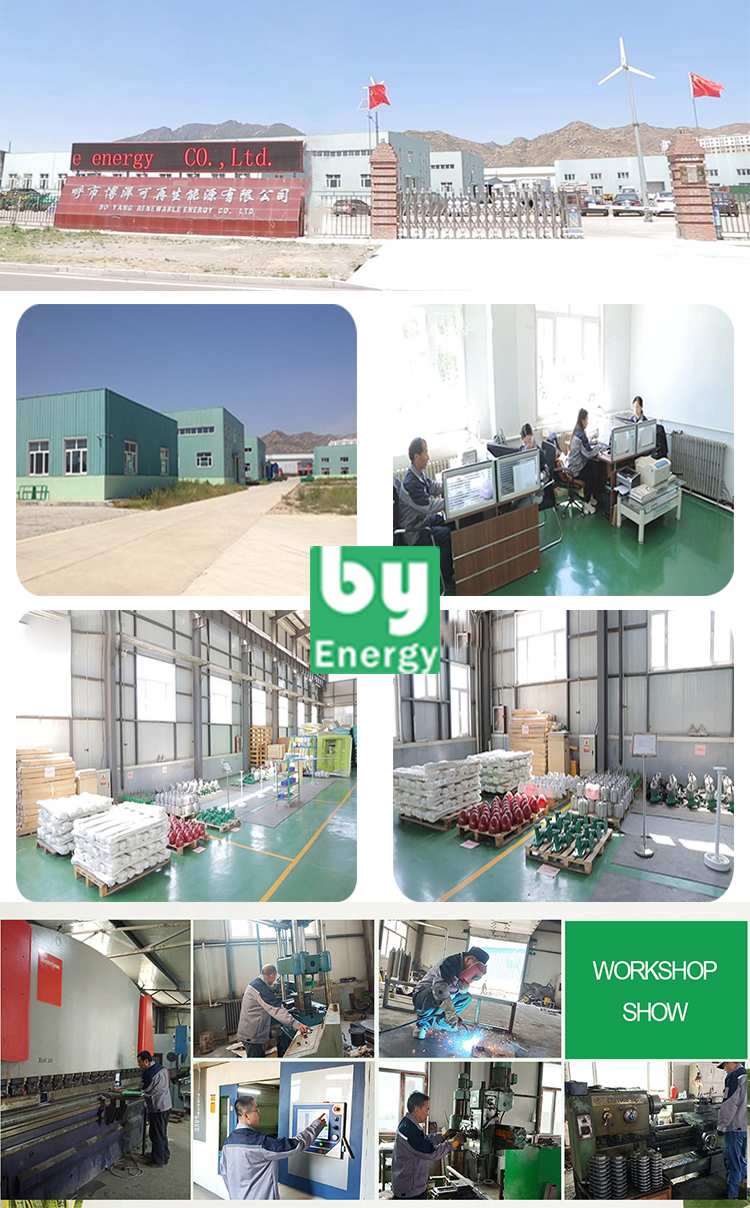 60w 100w 300w self running magnetic generator other energy related products water pump agriculture solar energy