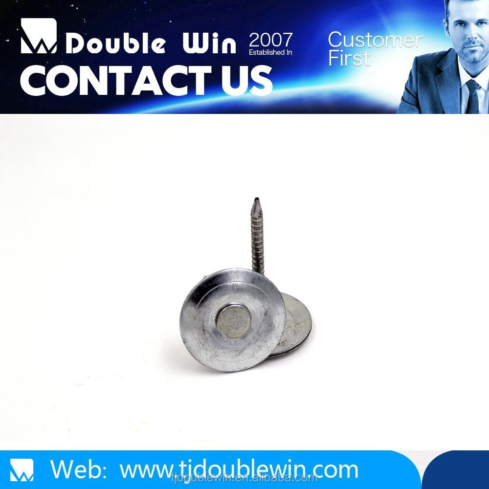 allibaba com ,umbrella head roofing nails, common wire nail