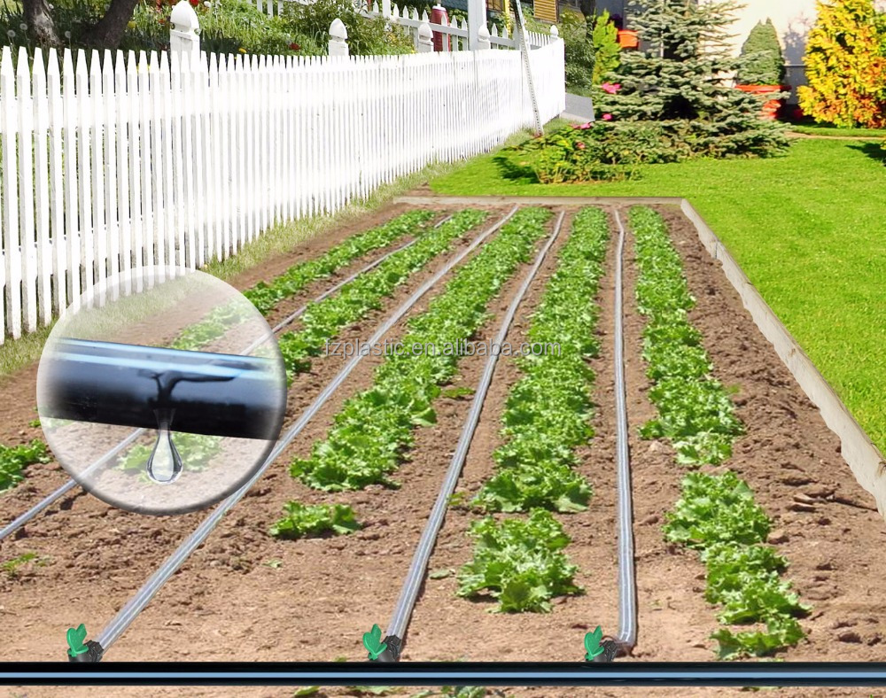 Underground drip irrigation system for Home garden drip irrigation design