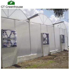 Manufacturer of Greenhouse for Solar and Tropical